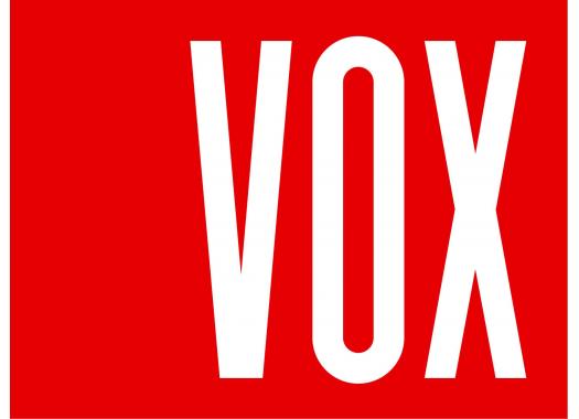 VOX  SYSTEM MAX-3